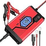 Suaoki - Chargeur de Batterie pour Voiture 4 Ampères 6/12V, Mainteneur Intelligent et Automatique avec plusieurs protections, 8 étapes d'identification des charges pour voiture, camion, moto